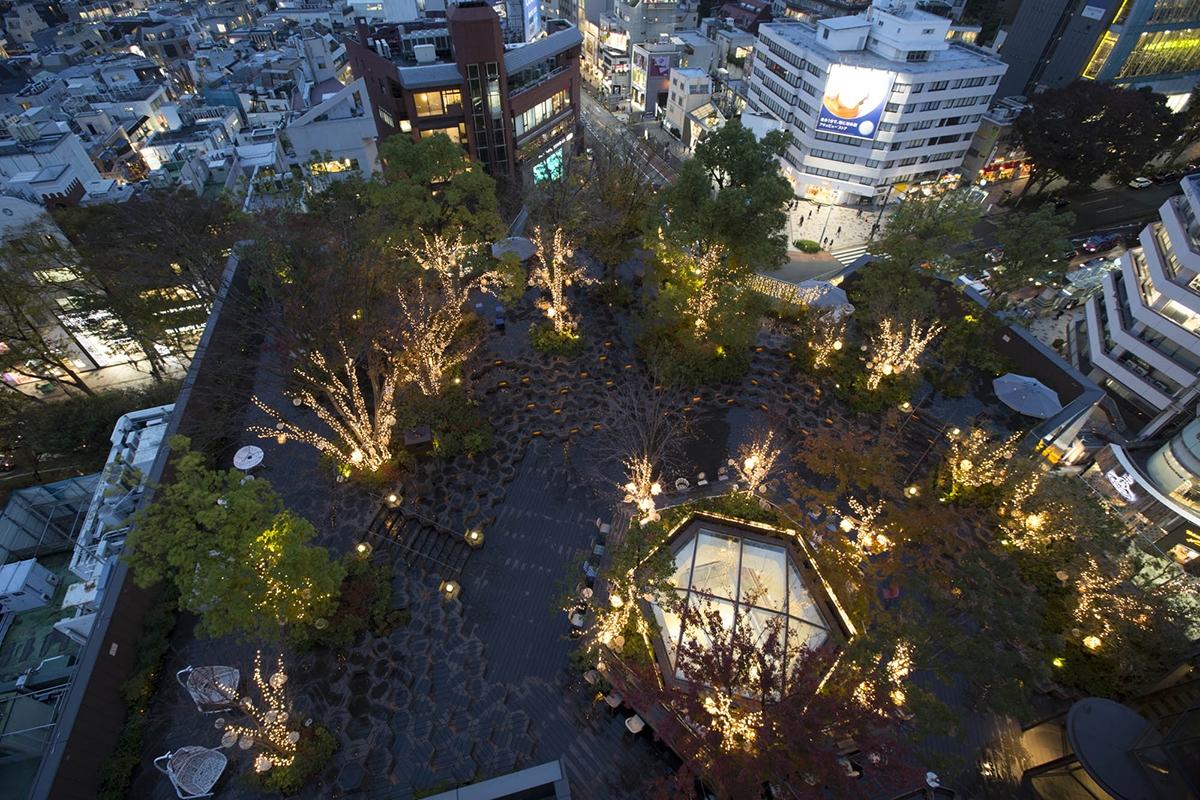 約16,000球の光が彩るイルミネーション! 東急プラザ「おもはらの森」に優しい灯りの空間が登場